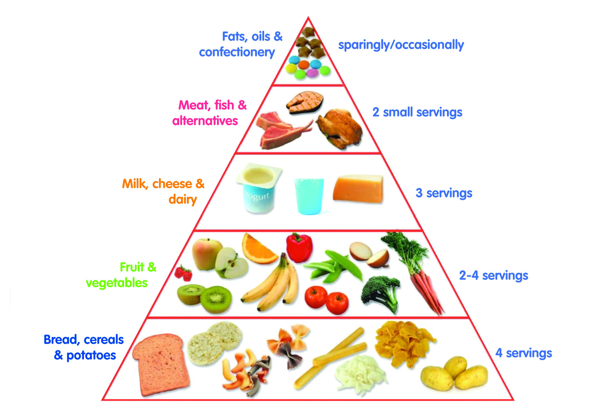 food pyramid for adults