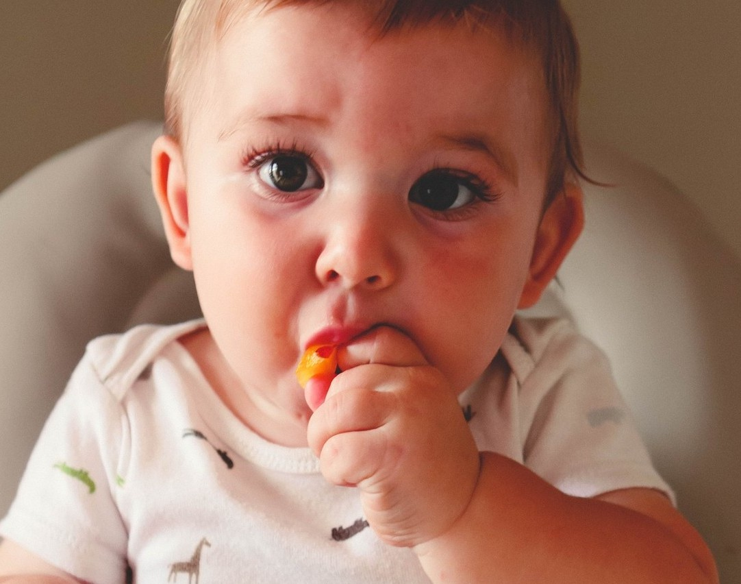 Suitable Finger Foods For Baby From 6 9 Months First