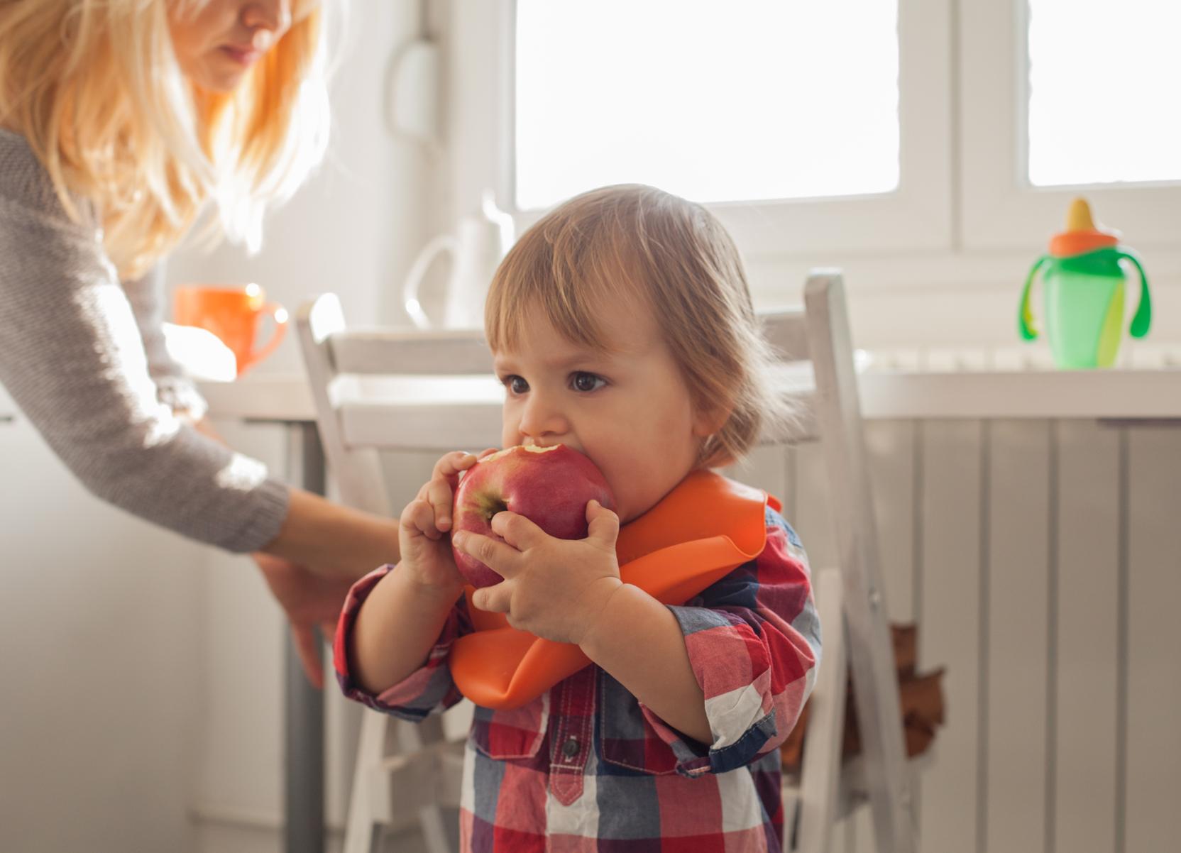 Toddler Food Pyramid First 1000 Days